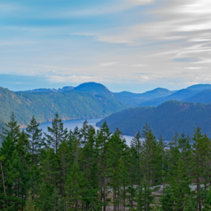 View from Malahat peak in a quality car
